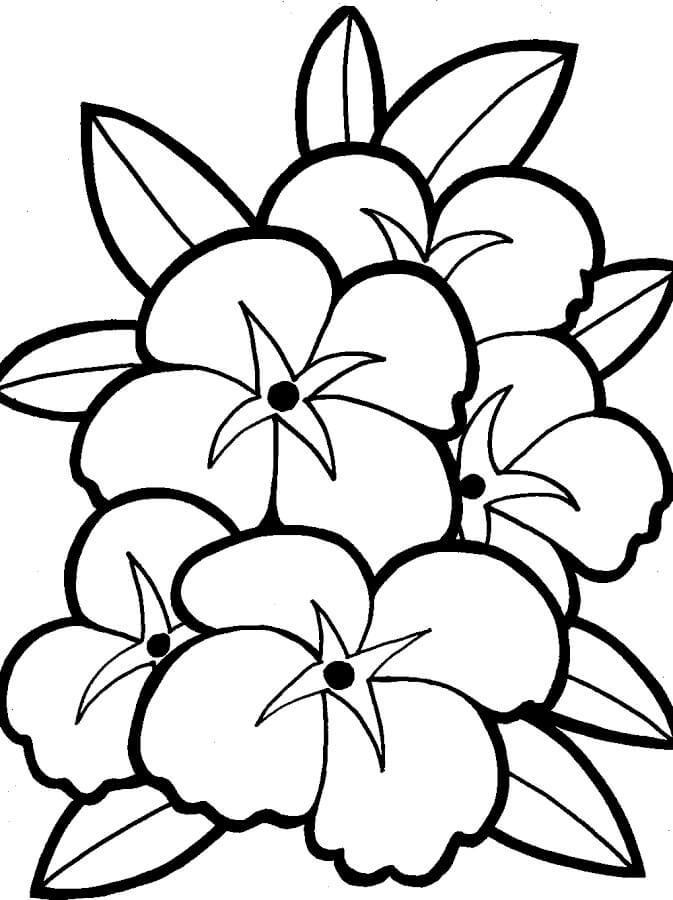 цветы картинки напечатать фукуоке