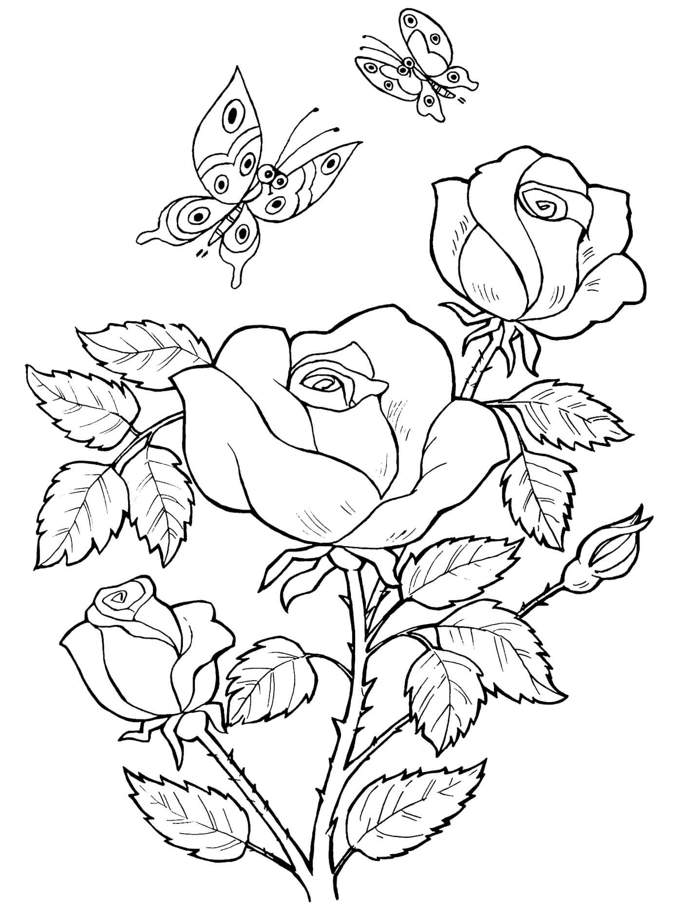 Картинки для раскраски с днем рождения цветы